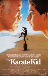 cover The Karate Kid