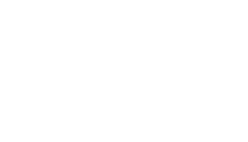 whitehat-security