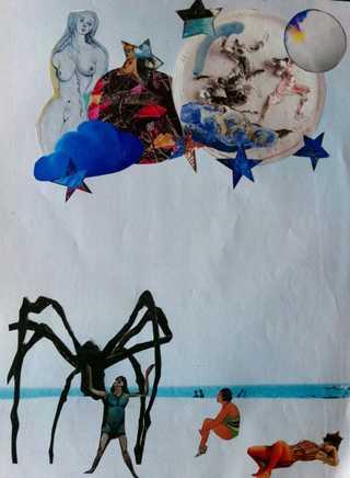 Araignée et étoiles de mer