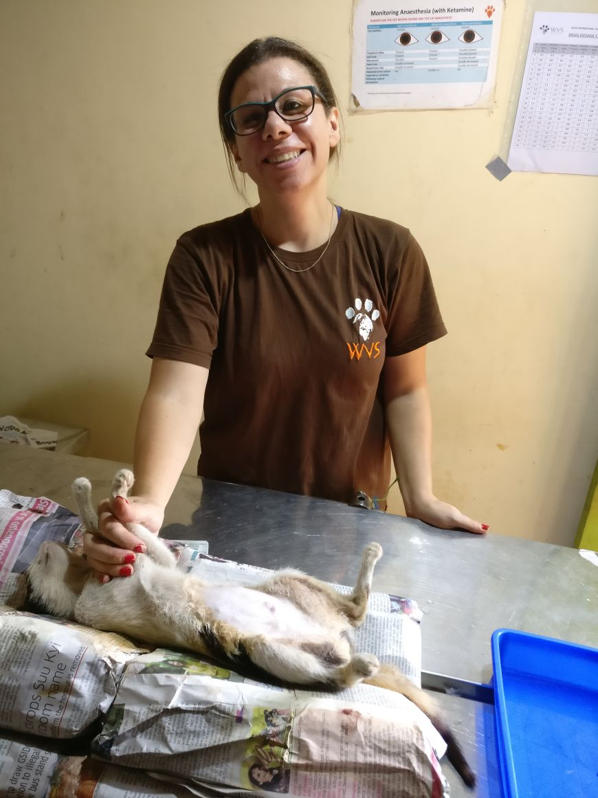 Vet assistant makes a sustainable difference with WVS