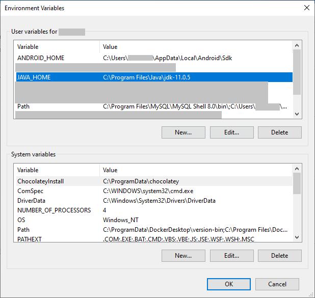 Editing the environment variables