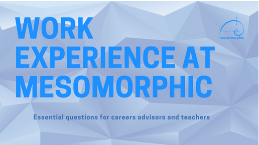 The title image for an infographic aimed at career advisors and teachers for work experience at Mesomorphici