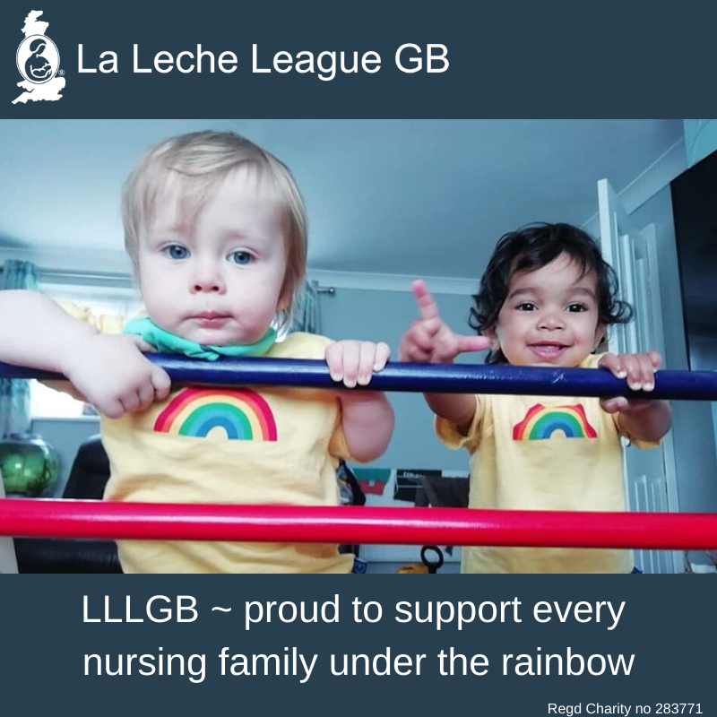 """Photo of children with caption """"LLLGB ~ Proud to support every nursing family under the rainbow"""""""