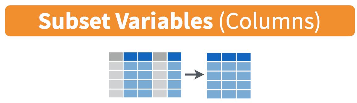 Diagram of select() columns.
