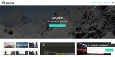 Screenshot of a page created with Awake, A Nuxt Blog Template