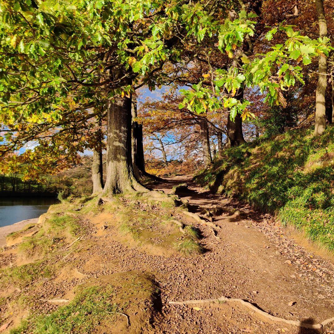 Path around Roundhay Park Lake