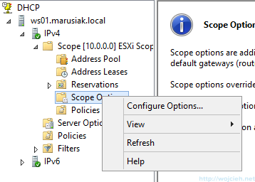 VMware vSphere Auto Deploy DHCP - 9