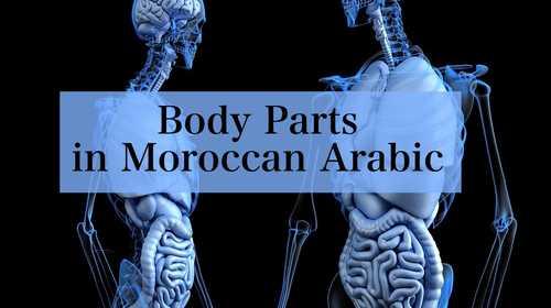 Body Parts in Moroccan Arabic