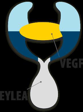 Anti-vascular endothelial growth factor (anti-VEGF) treatment