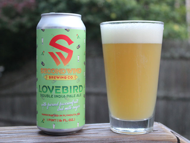 A 16oz can of Lovebird poured into a pint glass