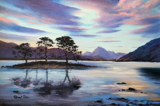 Island Pines Loch Maree
