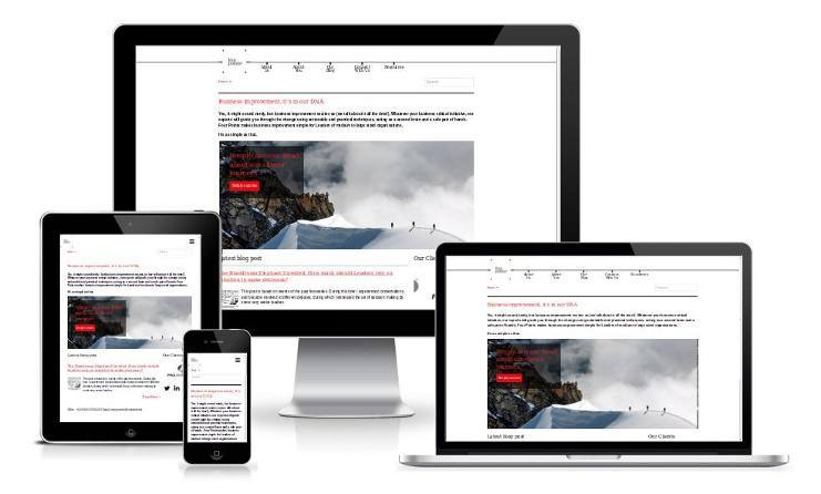 Responsive devices view