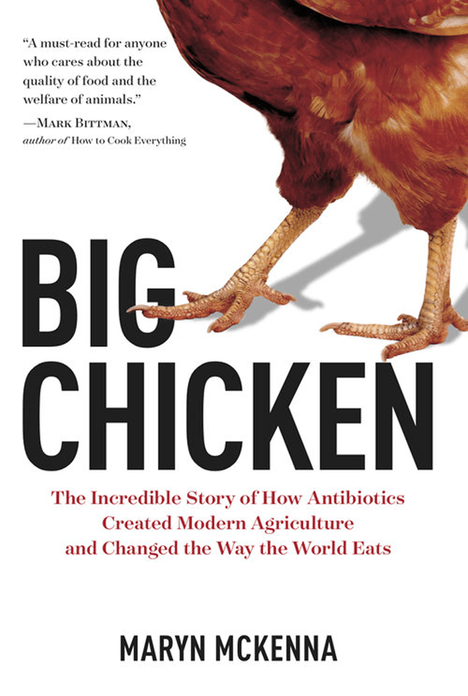 Big Chicken How Antibiotics Destroyed The Agricultural System