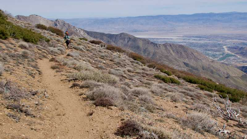Wide open trail