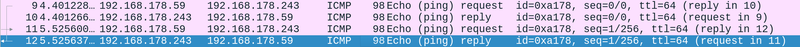 Two ping requests in Wireshark