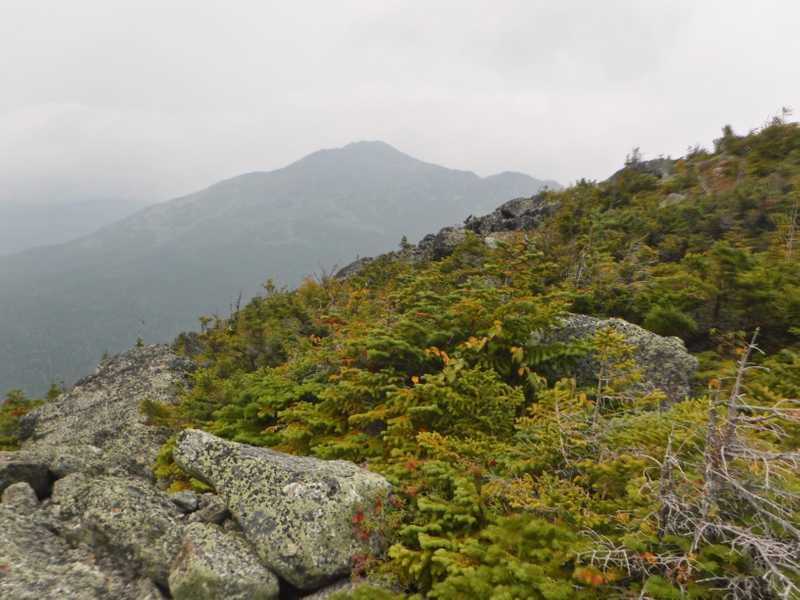 View of Wildcat Mountain