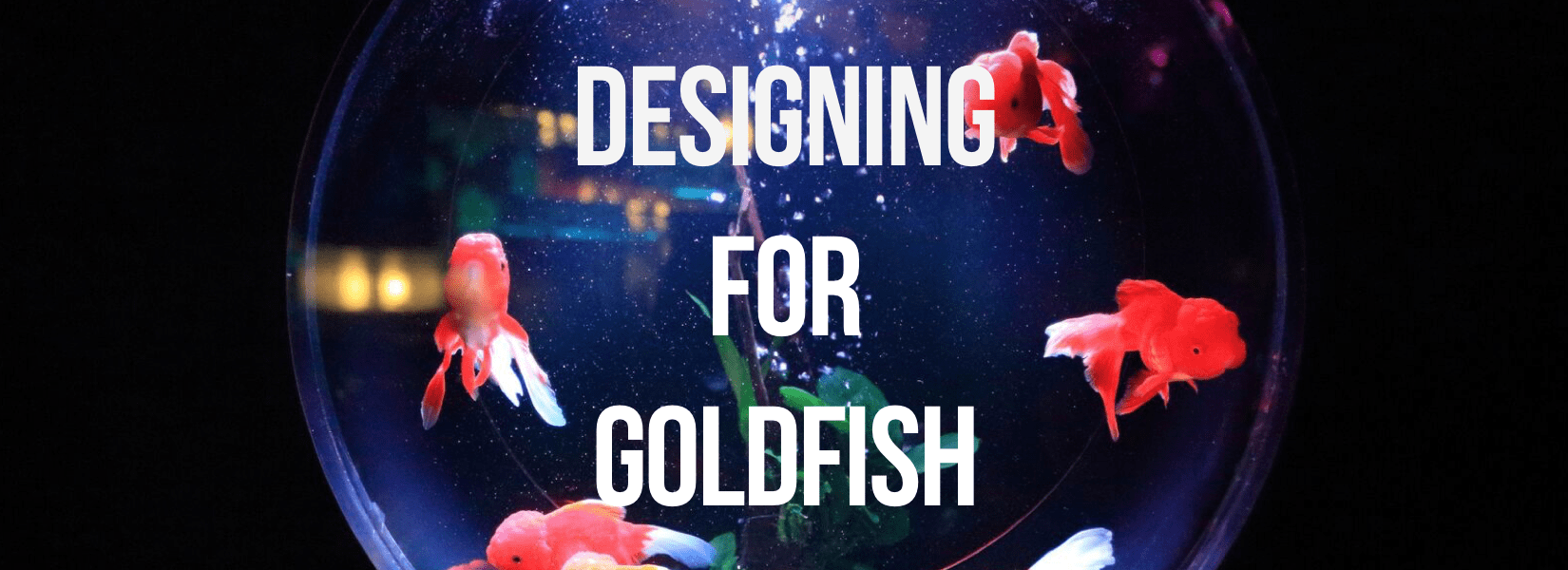 Designing for Goldfish