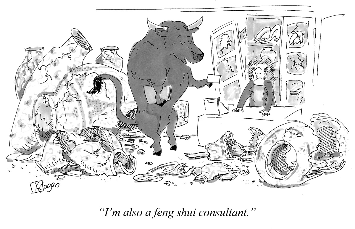 I'm also a feng shui consultant.