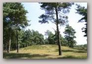 Grafheuvel Balloerveld  » Click to zoom ->