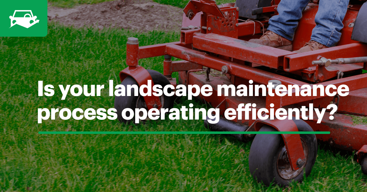 Landscape maintenance visual blog