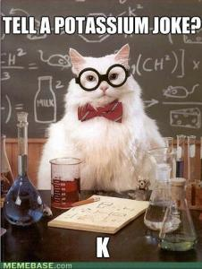 ChemistryCat
