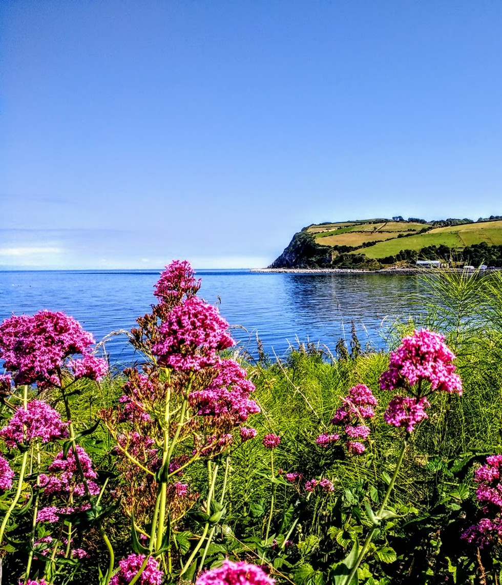 Picturesque view of the Antrim Coast on a warm summers day.