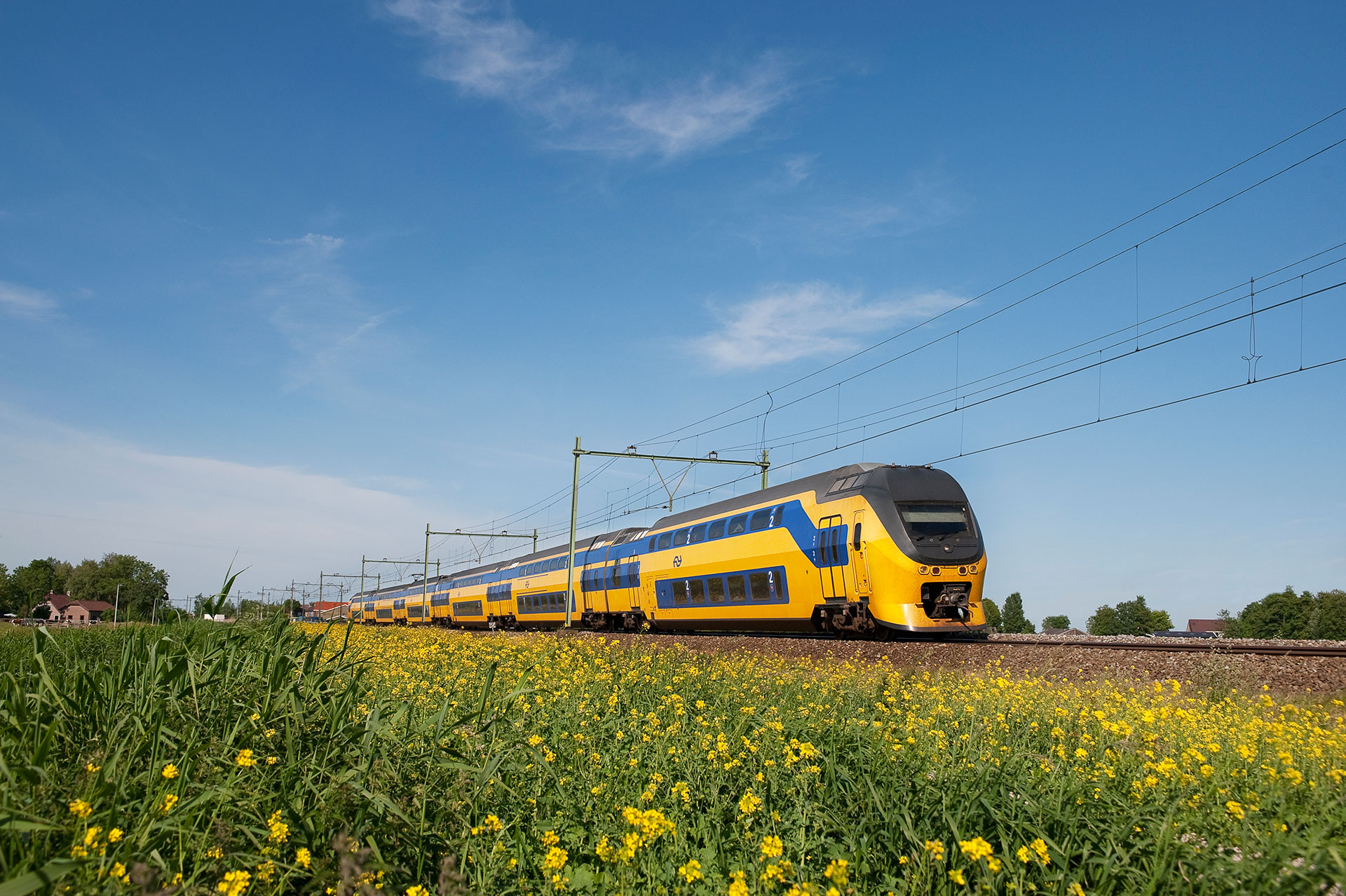 Hero image for Dutch Railways
