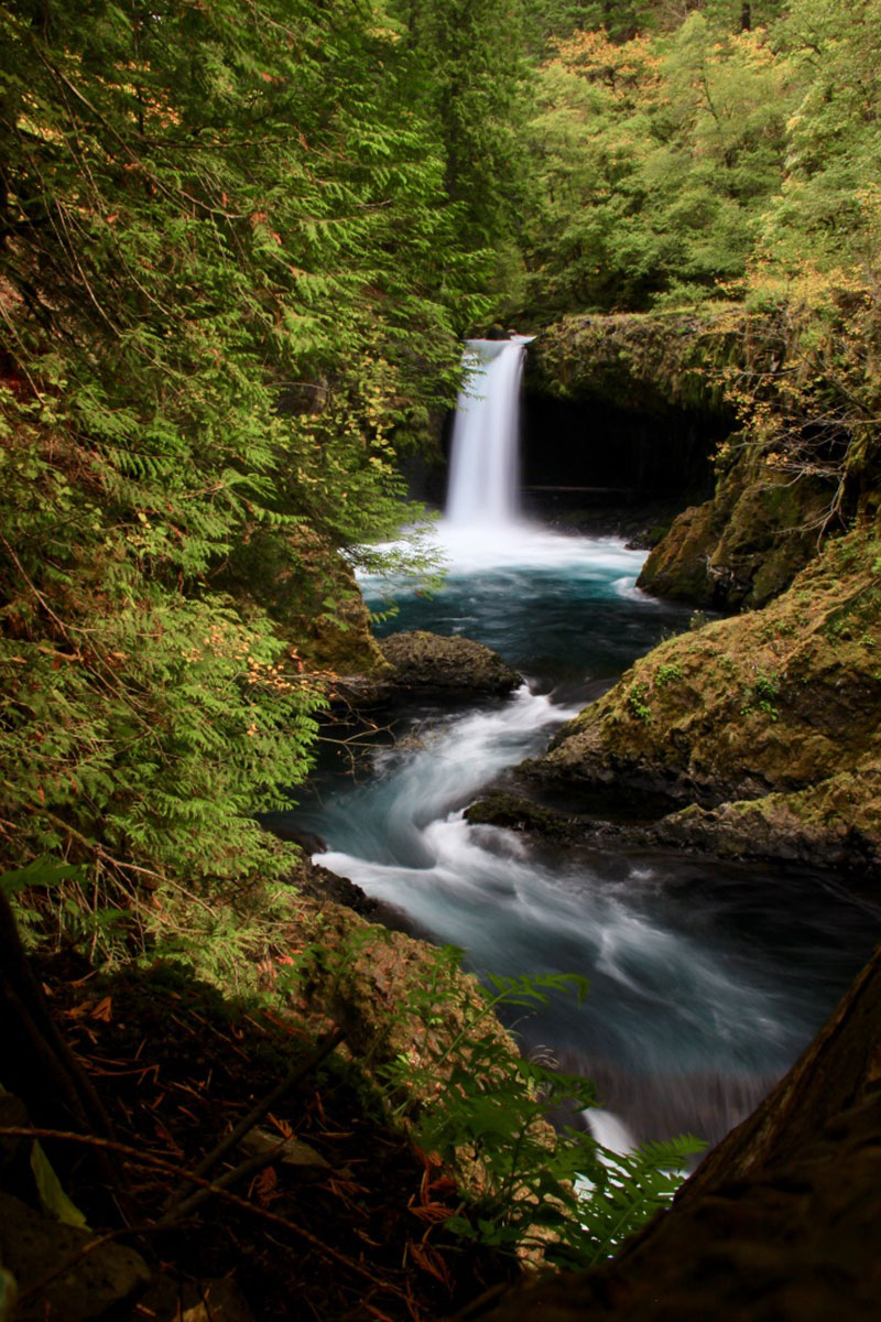 Unnamed waterfall on the Little White Salmon River