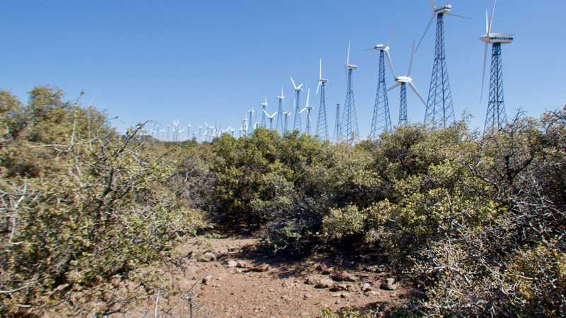 Older wind mills next to the PCT
