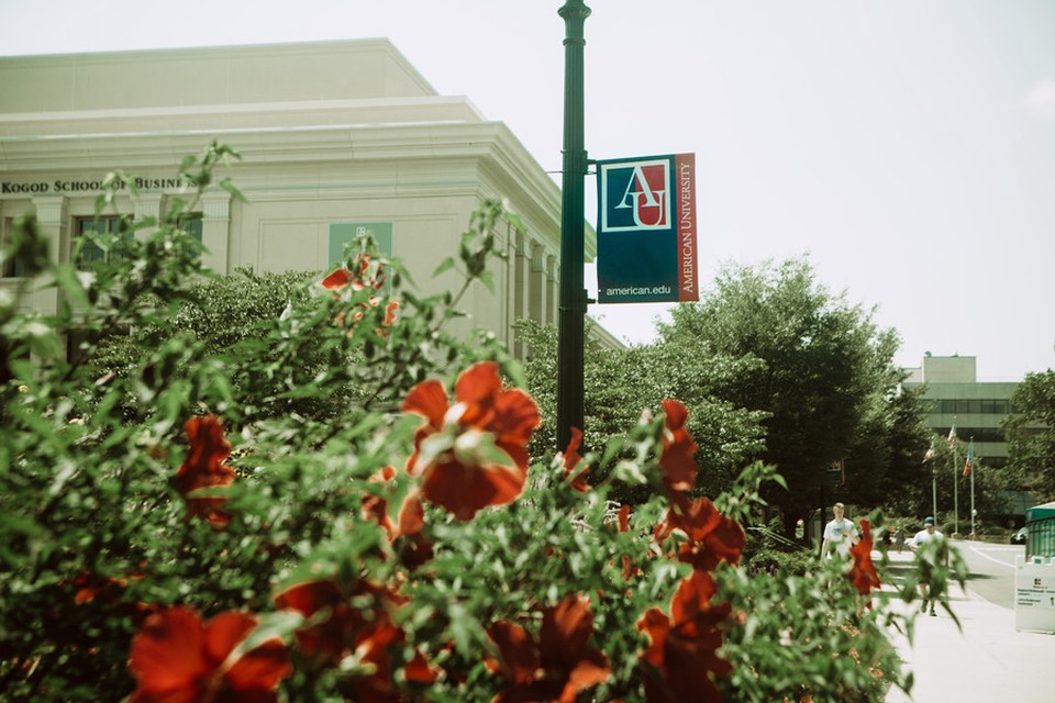 Red flowers and a AU sign