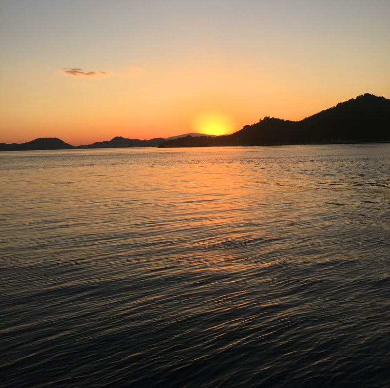 bunny island sunset