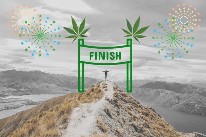 Will New Zealand Legalise Marijuana Before Australia?