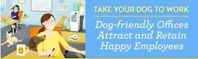 Take Your Dog to Work! (INFOGRAPHIC)