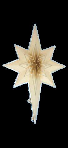 Star Of Bethlehem photo