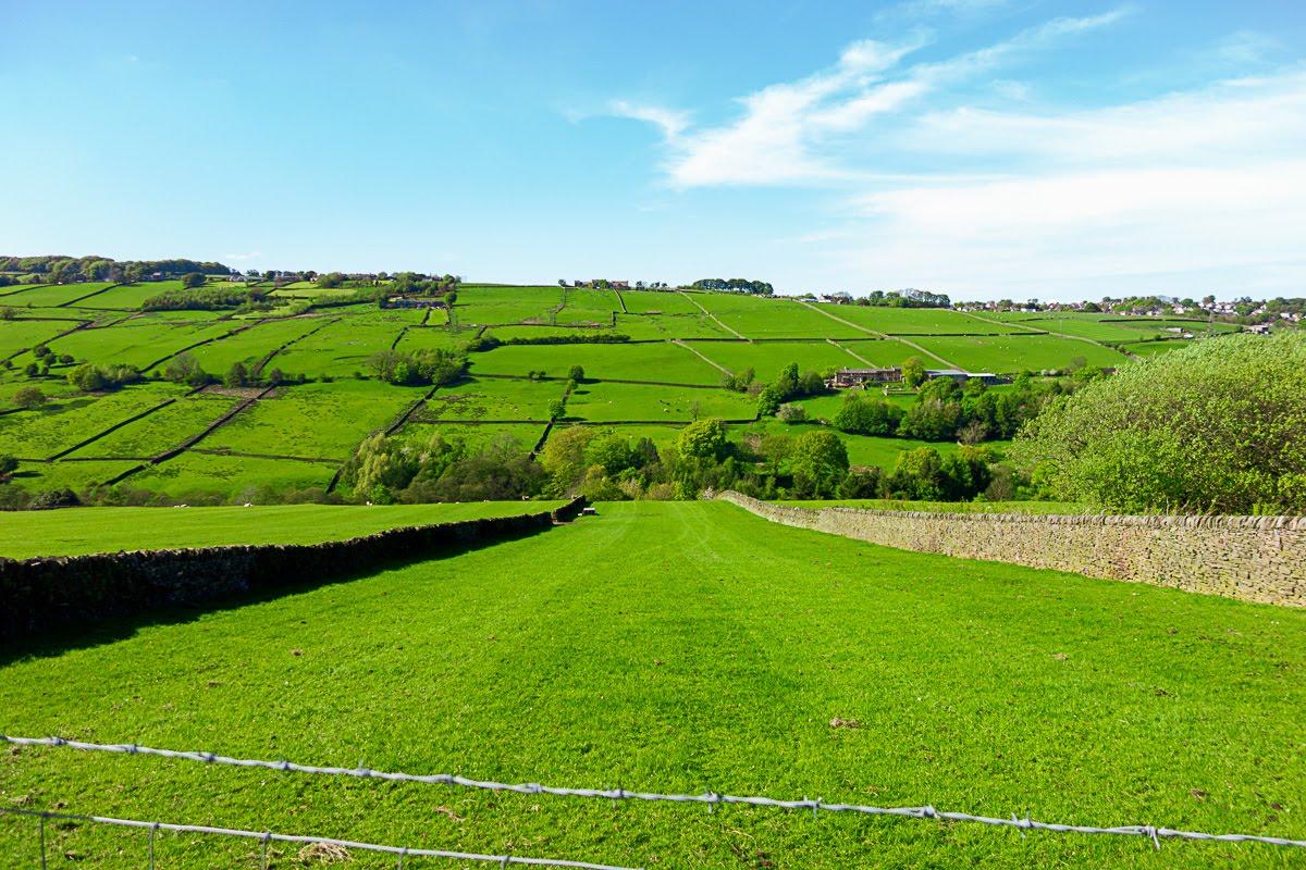 green meadow in haworth, uk