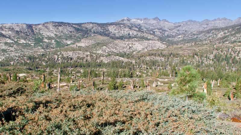 A view of Iron Mountain