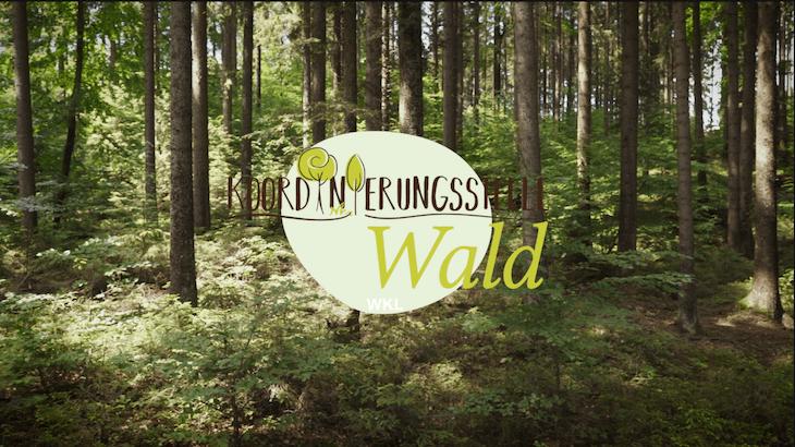 Wald mit Koordinierungsstelle Logo