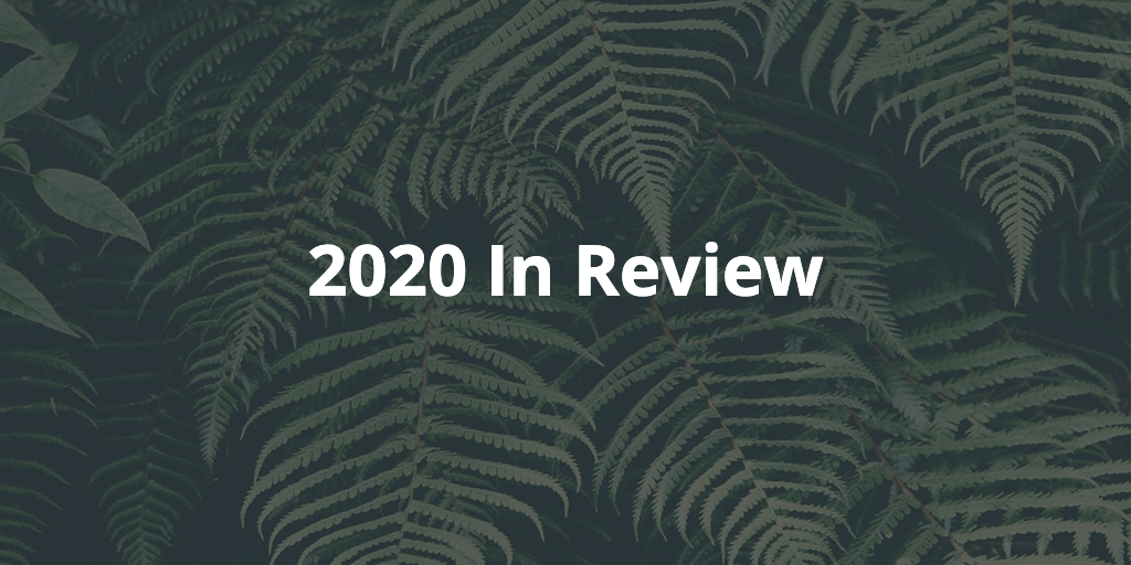 Text: 2020 In Review, with ferns in the background