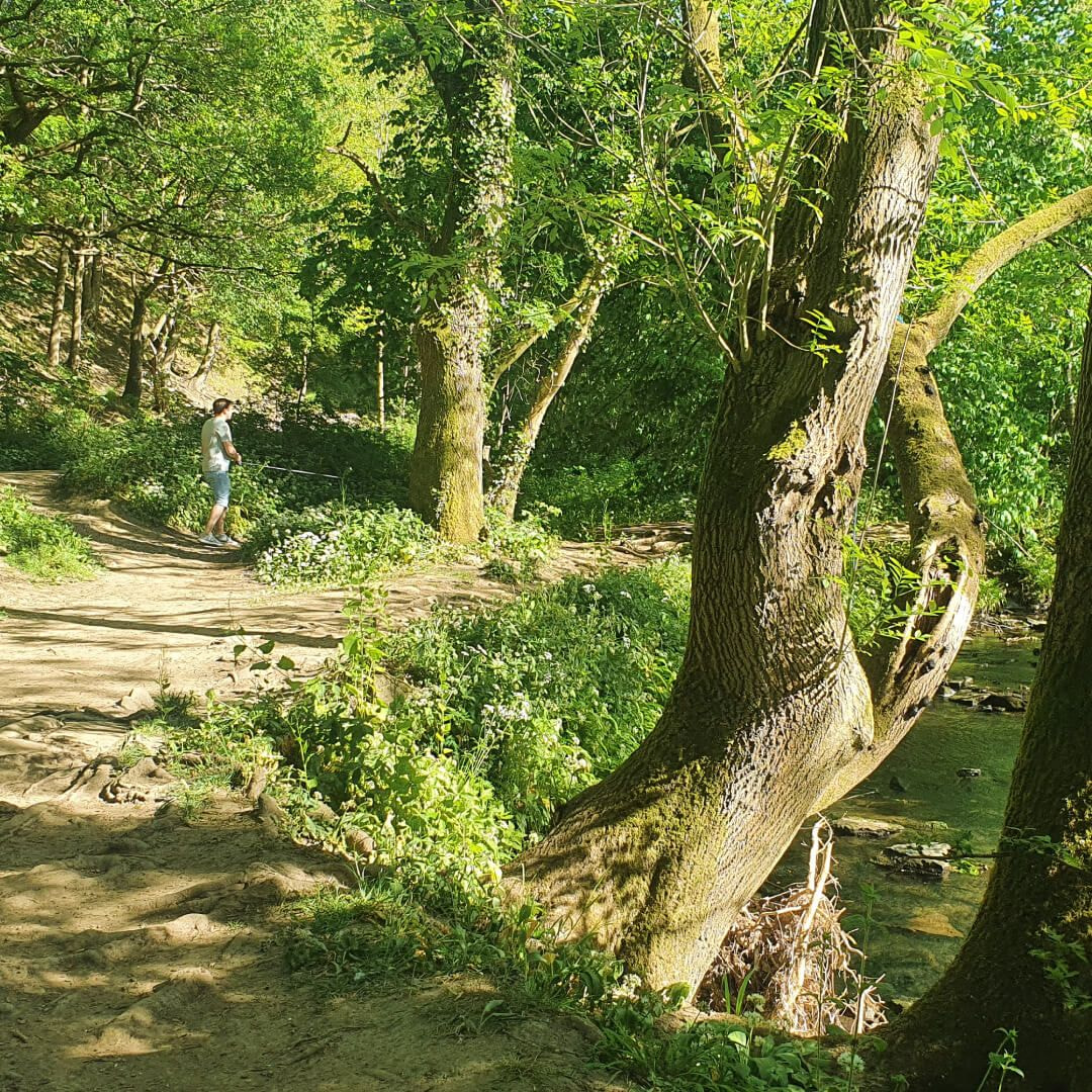 Post Hill Nature Reserve pat