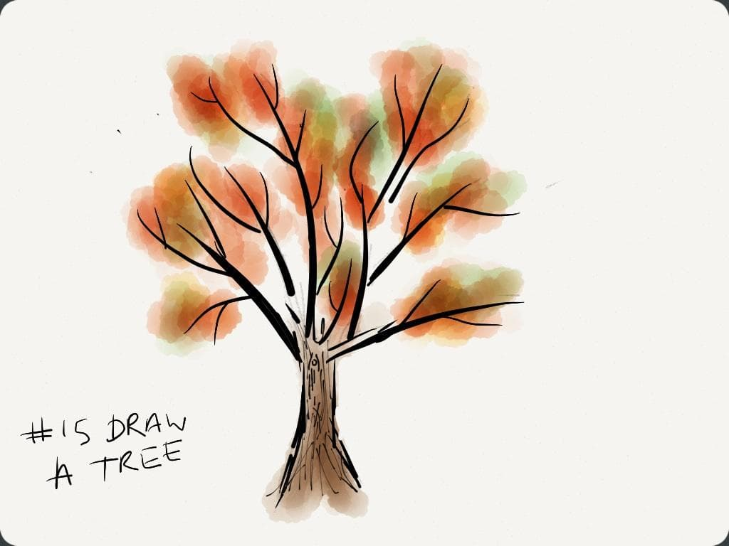 EDM #15 Draw a Tree or Trees, Leaves or Branches