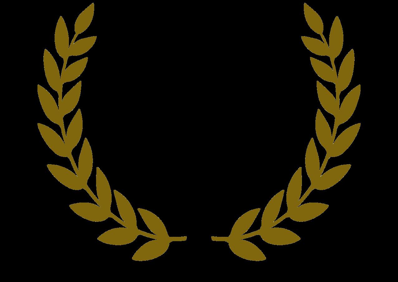 SVEF award illustration