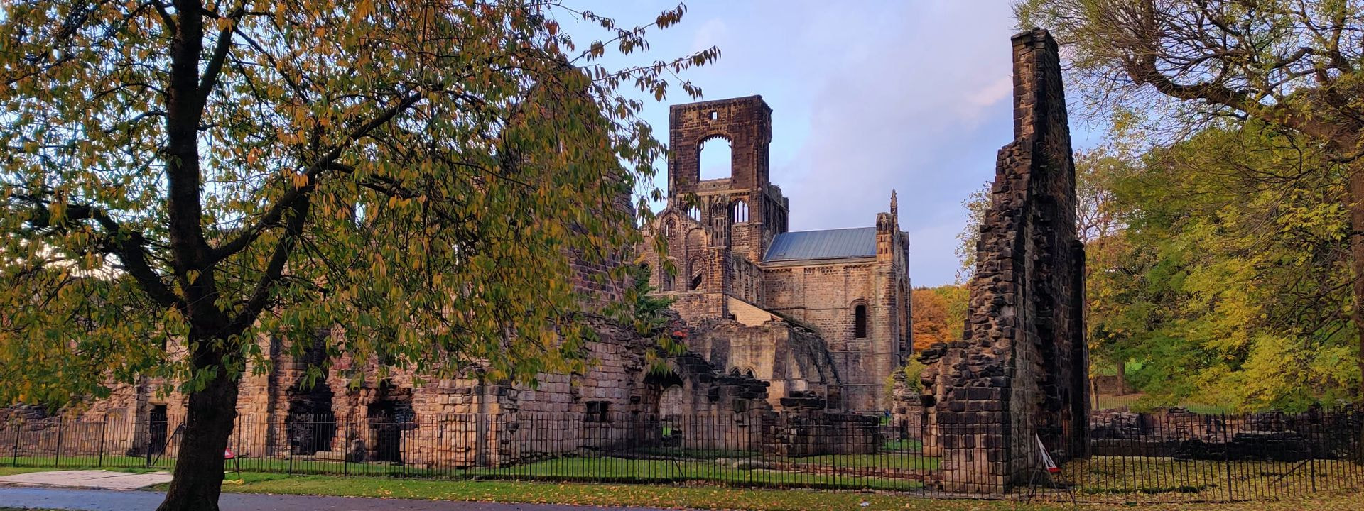 Kirkstall Abbey in Autumn slightly behind a tree.