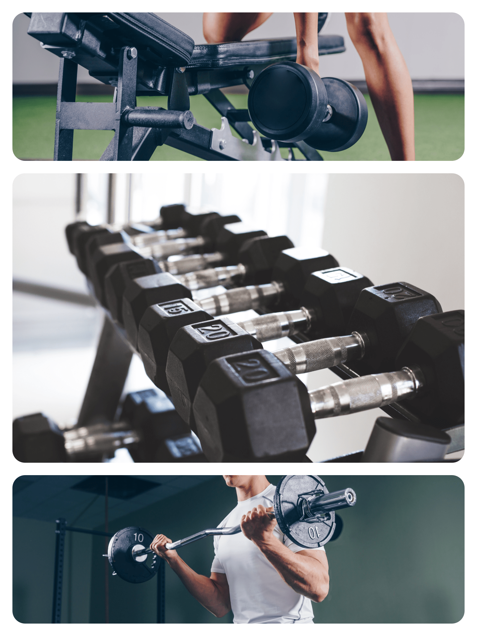 pictures of weights and resistance training