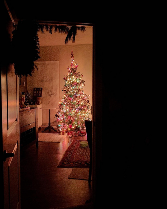 christmas tree in the dark with colored lights