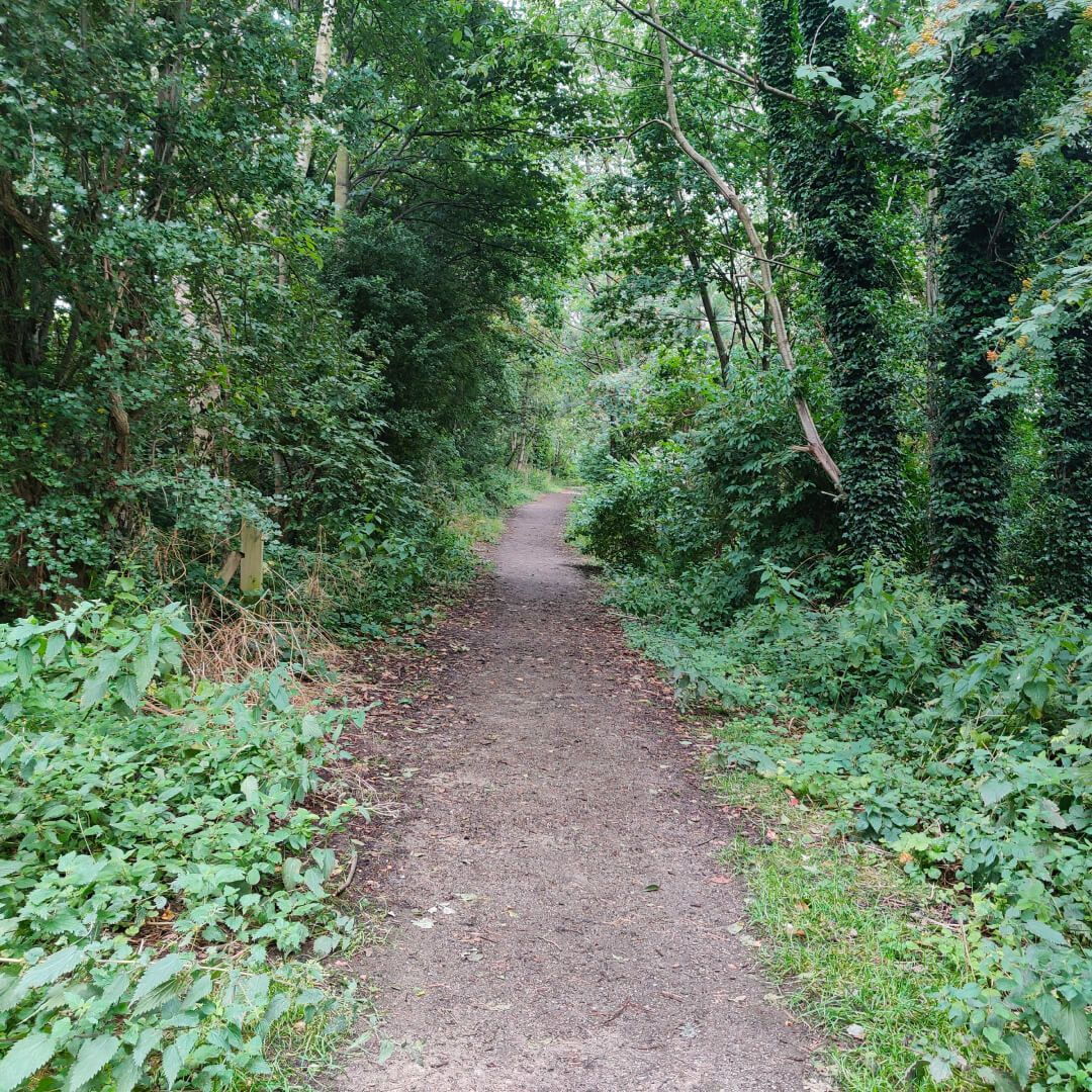 Sugarwell Hill Park path