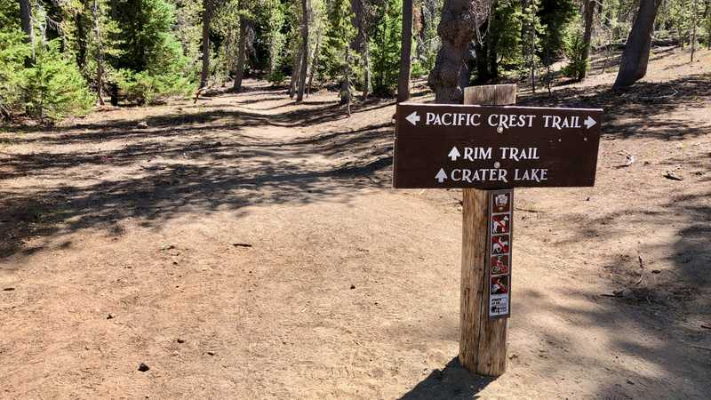 The junction of the PCT and Crater Rim alternate