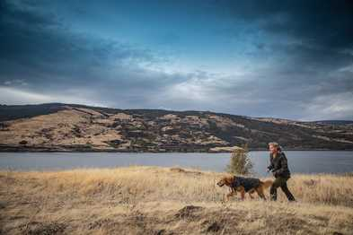 """""""The Adventure Dog"""" Holiday Gift Guide 2019"""