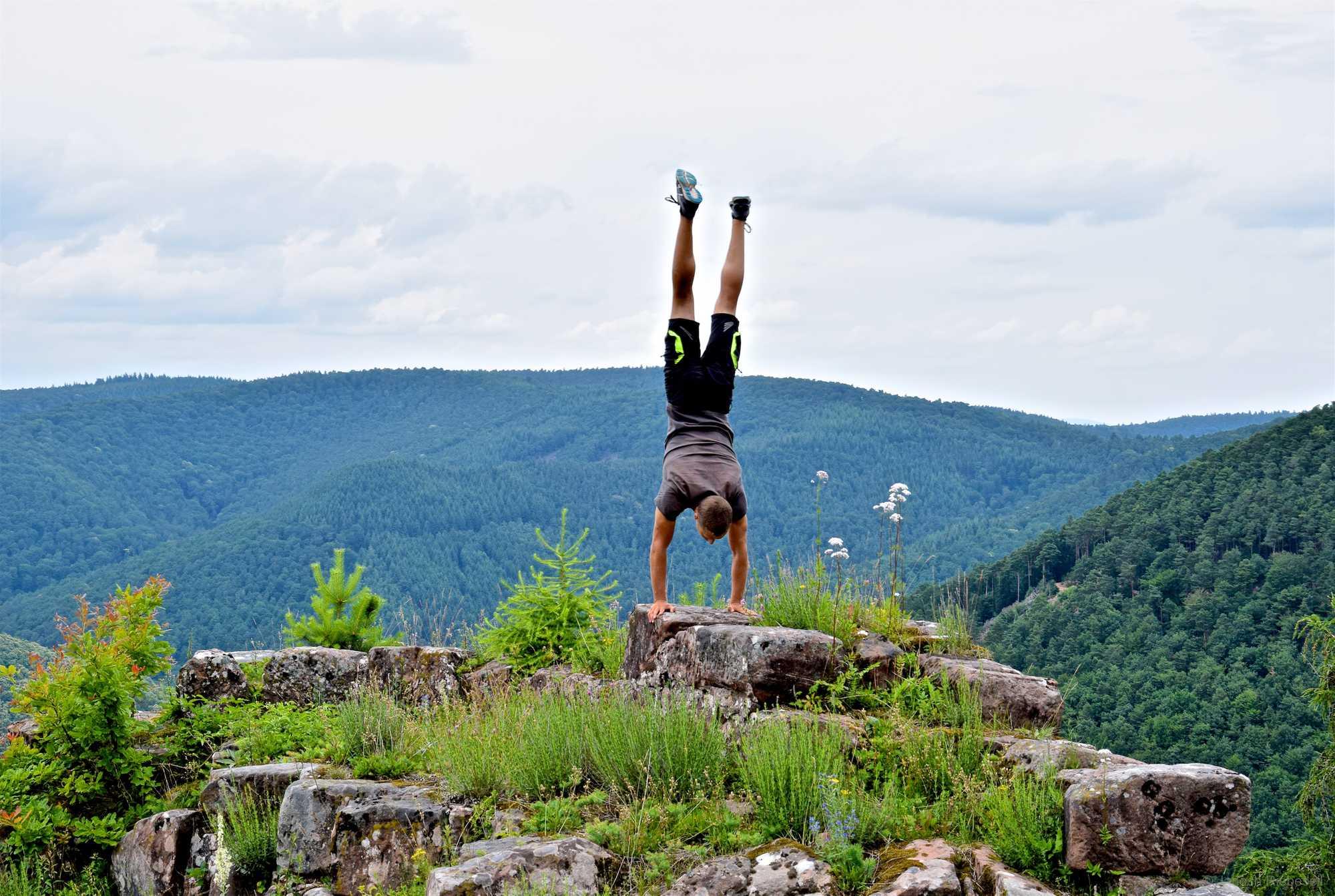 Palatinate Forest Handstand