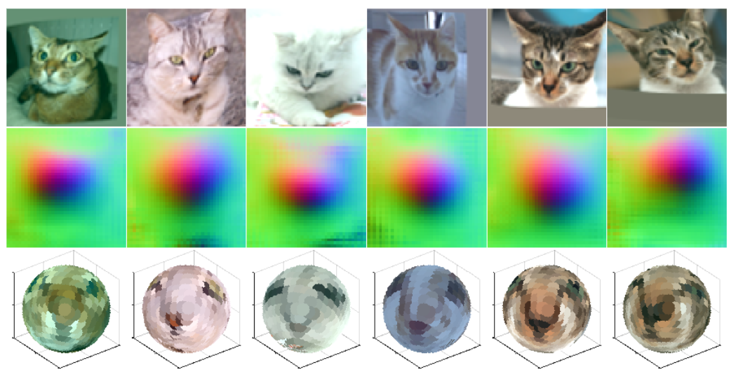 Cats that have been fed into an autoencoder
