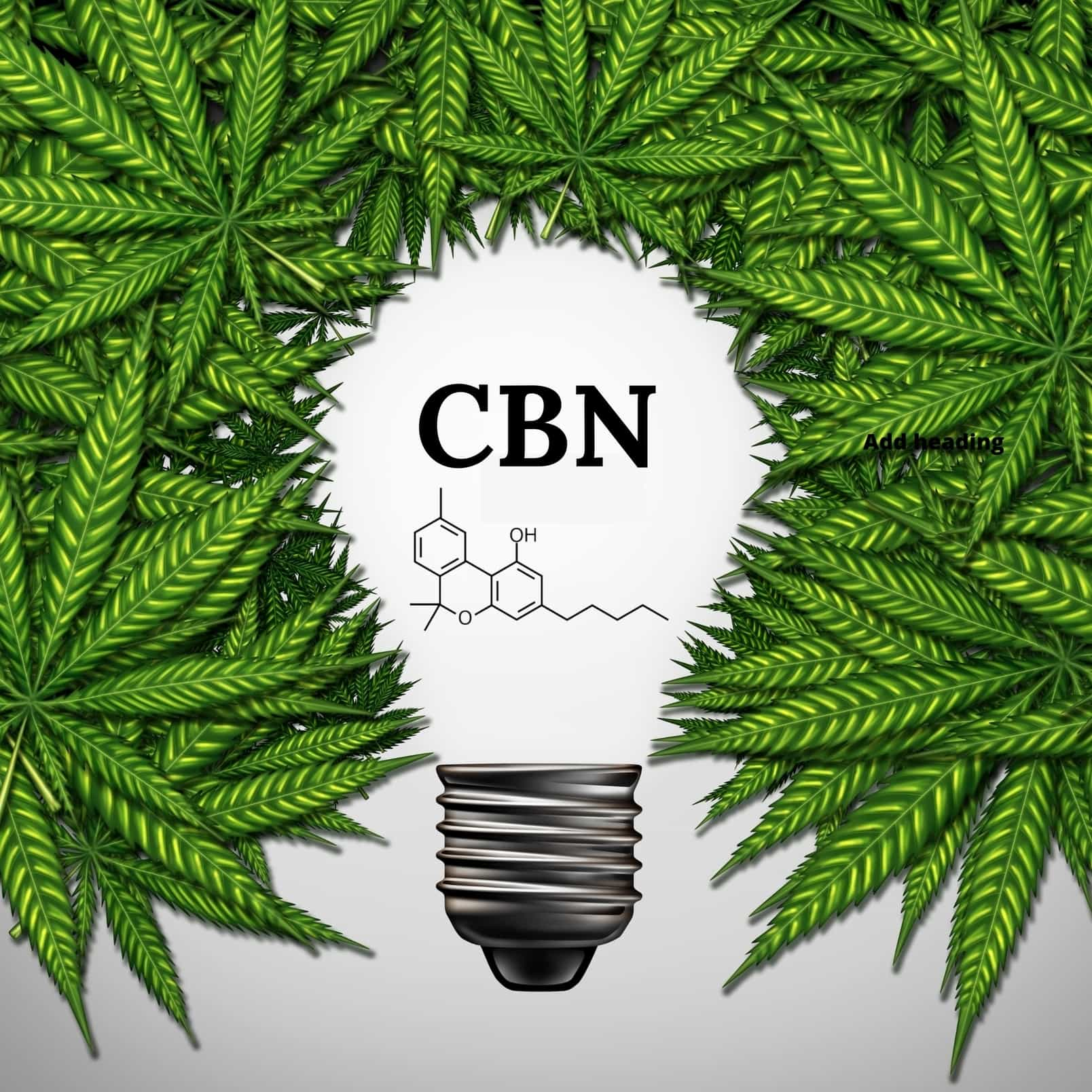What is CBN (Cannabinol) and its Medical Benefits.